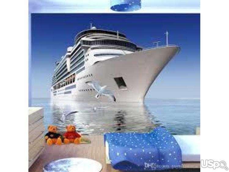 Готовый туристический бизнес (Круизные туры)