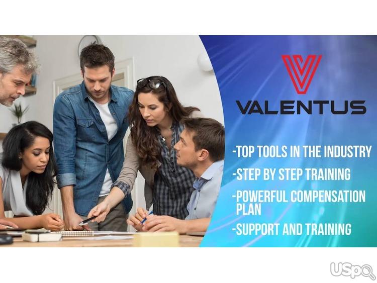Компания Valentus. Продвижение онлайн магазина.