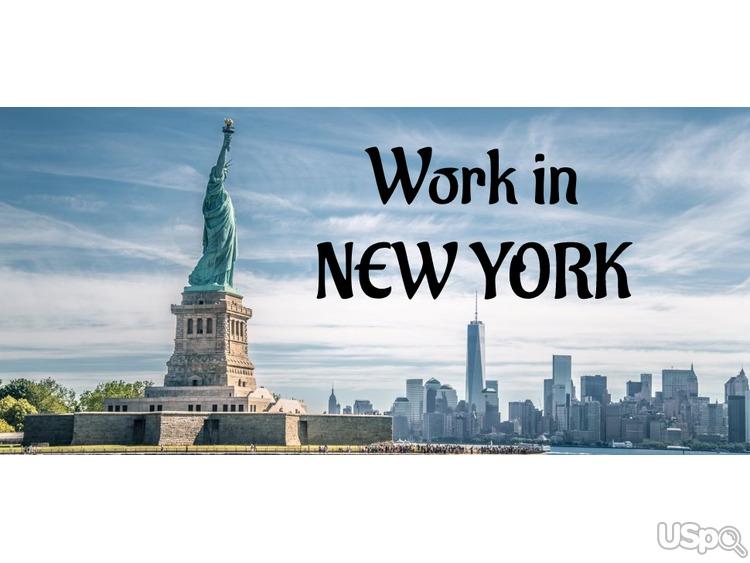 РАБОТА НА КЕШ НЬЮ ЙОРК/ NEW YORK